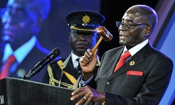 'Mugabe concerned about state of affairs'