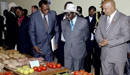 Mugabe tours Harare Agricultural Show
