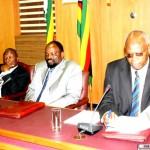 Zimbabwe finance minister: China slowdown won't affect FDI, big projects