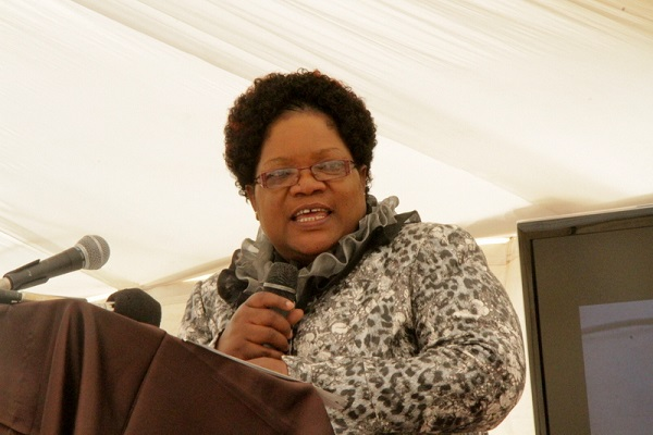 Mujuru wades into Mat South province, politicians from the province attend Harare meeting