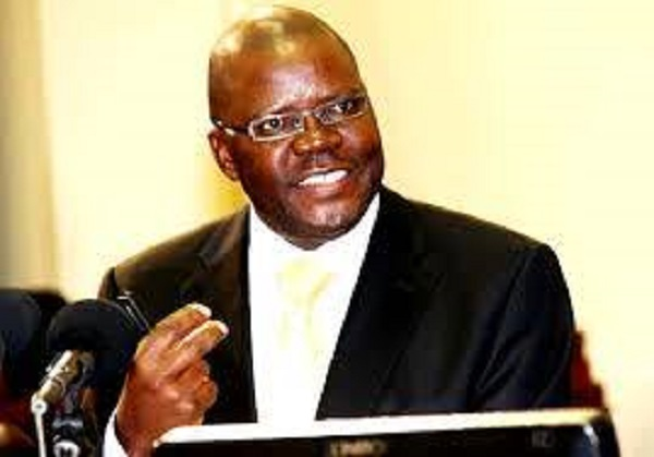 Biti's PDP slams 'Zanu PF' indigenisation