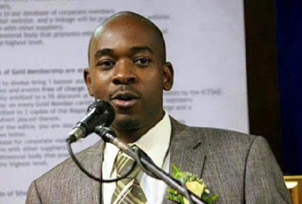 Chamisa favourite to succeed Tsvangirai – Poll