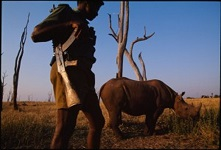 35 Years in Jail for Zim Rhino Poacher