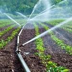 Water_Irrigation farmer