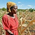 Zimbabwe-to-eperience-drought